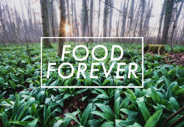 Food Forever: Vom Wagen und Sammeln
